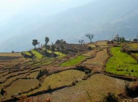 nepal-dhampus-960x645